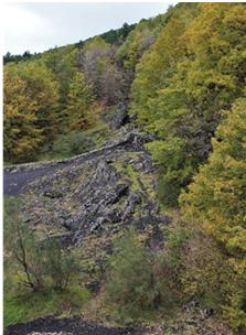 foto 1, La serie di hornitos allineati lungo la frattura eruttiva di Ripa della Naca a quota 1200 metri sul versante nordorientale dell'Etna. (foto di Guglielmo Manitta)