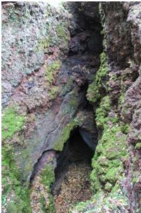 Foto 3, le pareti interne di un hornitos della frattura di quota 1200. (foto di Guglielmo Manitta)