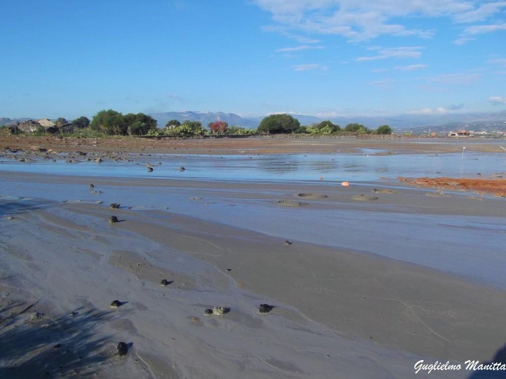 La parte centrale del sito delle Salinelle dei Cappuccini a Paternò. Si notano le ampie colate di fango recentemente emesse.